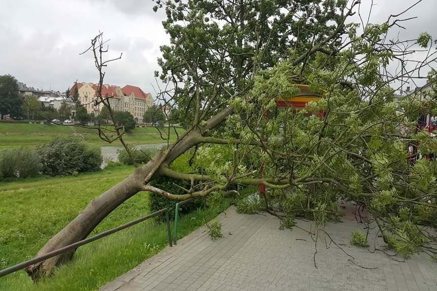Silny wiatr w powiecie przemyskim